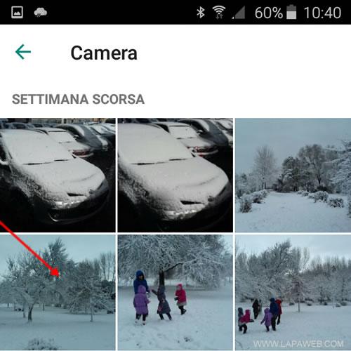 selezionare l'immagine digitale da utilizzare come foto del profilo su Whatsapp